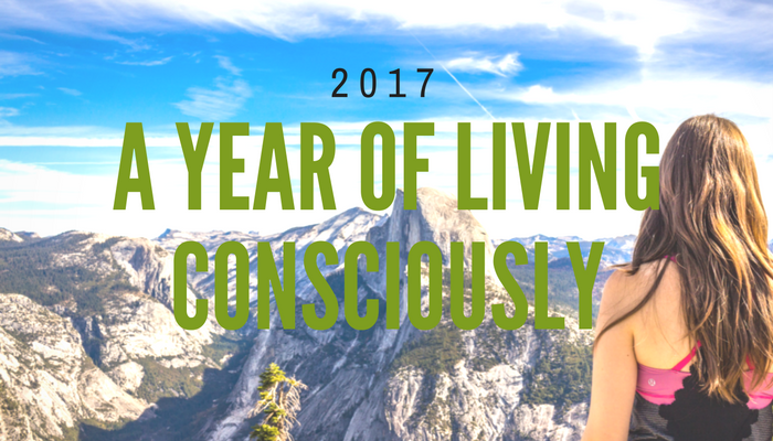 2017 – A Year of Living Consciously
